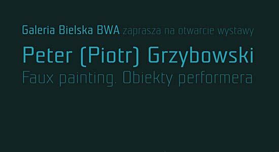 BWA wystawa Piotra Grzybowskiego