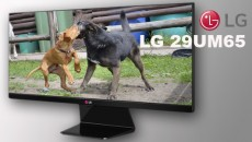 Monitor LG 29UM65